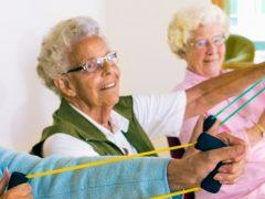 En otoño actívate y practica el envejecimiento activo