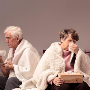 Gripe o resfriado? (II). La gripe